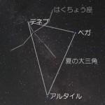 七夕祭り 織姫 彦星の方角と時間は? 夏の大三角は?